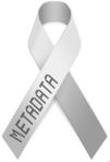 metadata_awareness_ribbon